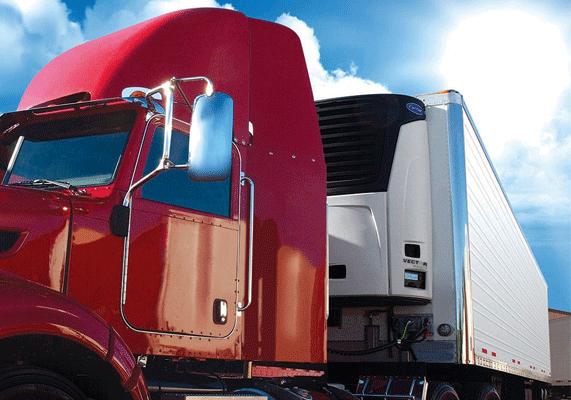 Insight Global Logistics - Truck Refrigrator